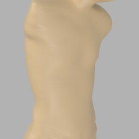Steve torso model (3)